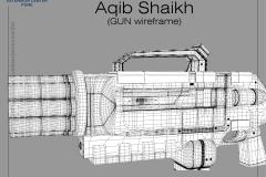 Aqib-Shaikh_Gun