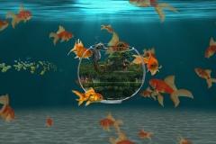 Namrata Singh Image Manupulation
