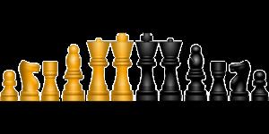 chess model